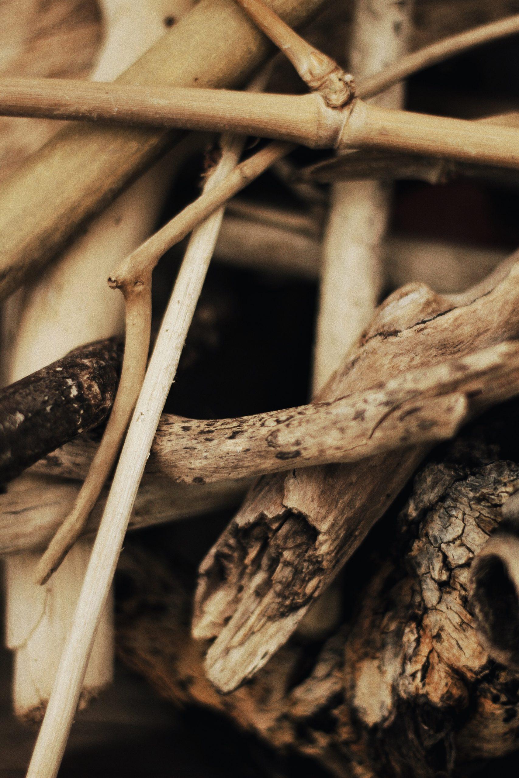 Vecchie e nuove dipendenze: il fenomeno degli Hikikomori. Di Elisa Dettori