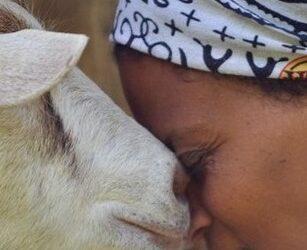 """È stata uccisa Agitu Gudeta, """"la regina delle capre felici"""""""